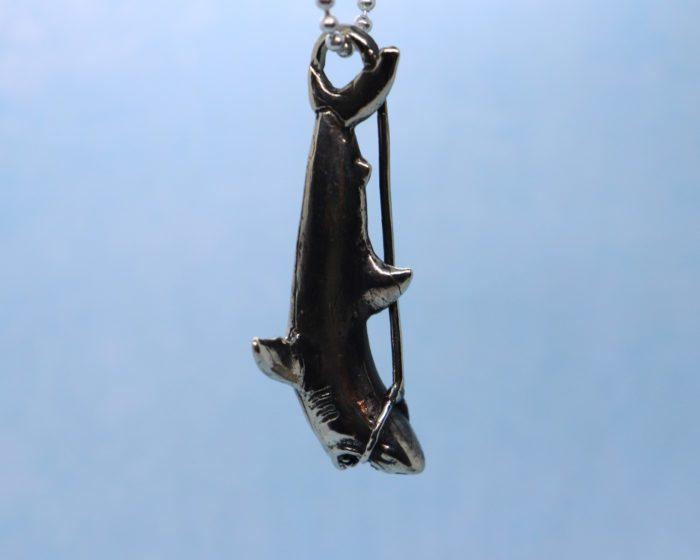 hanging shark