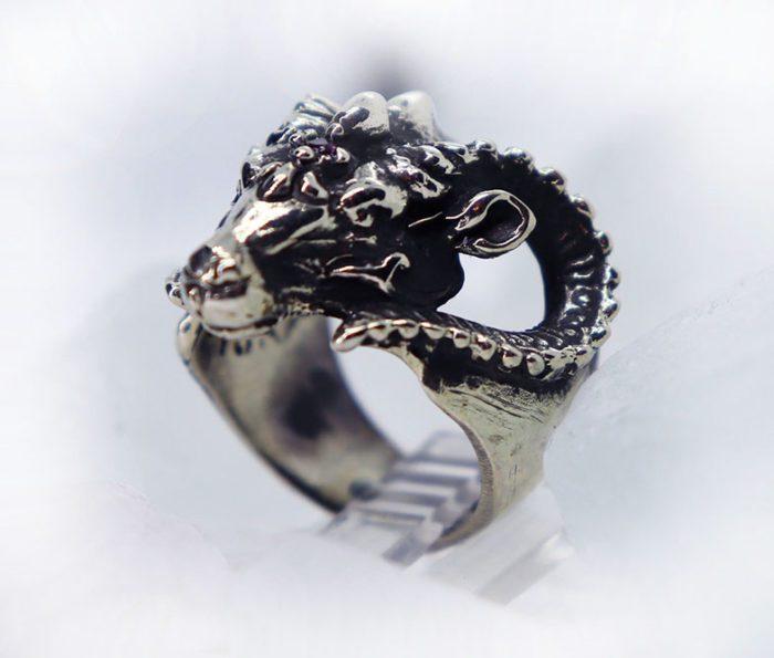 cool RAM ring 2