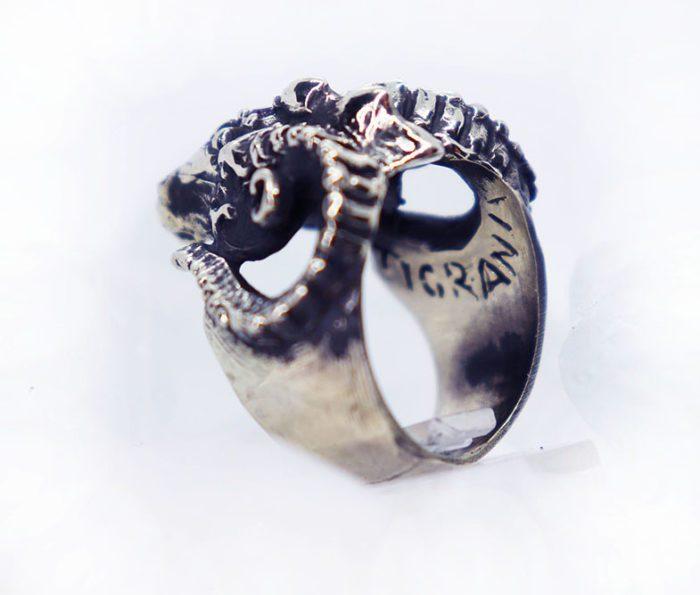 cool RAM ring 5